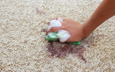 How Often Should I Clean My Carpet?