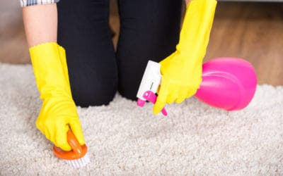 Advantages and Disadvantages  of Carpet Cleaning